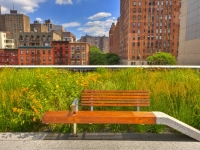 High Line - Chelsea, Manhattan