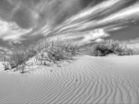 Winter At Gypsum Sand Dunes