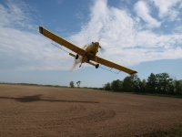 Crop Dusting In The Delta
