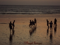 Pranjali's Photography