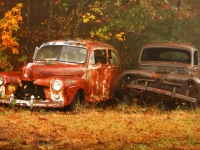 Rusting Together