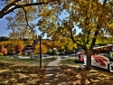 Fall In Iowa City