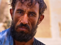 The Afghan Face