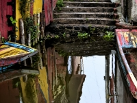 Xochimilco Reflections