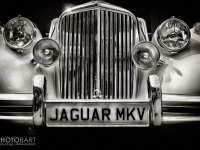 Jaguar Mkv