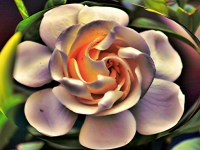 Twisted Gardenia Flower