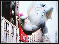 Dumbo An Elephant
