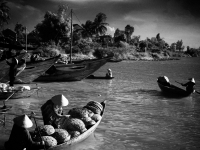 Fishermen Of Hue