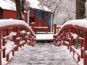 Joss House In Winter