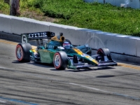 Lotus Back At Long Beach