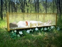 Glass Coffin