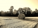 Hay In The Country -A Work Of Art