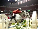 Show Jumping World Finals