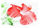 Red Hibiscus Woodblock-Style