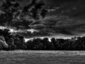 Sunset In The Park B/w