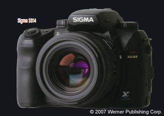 What's Next For Professional D-SLRs?