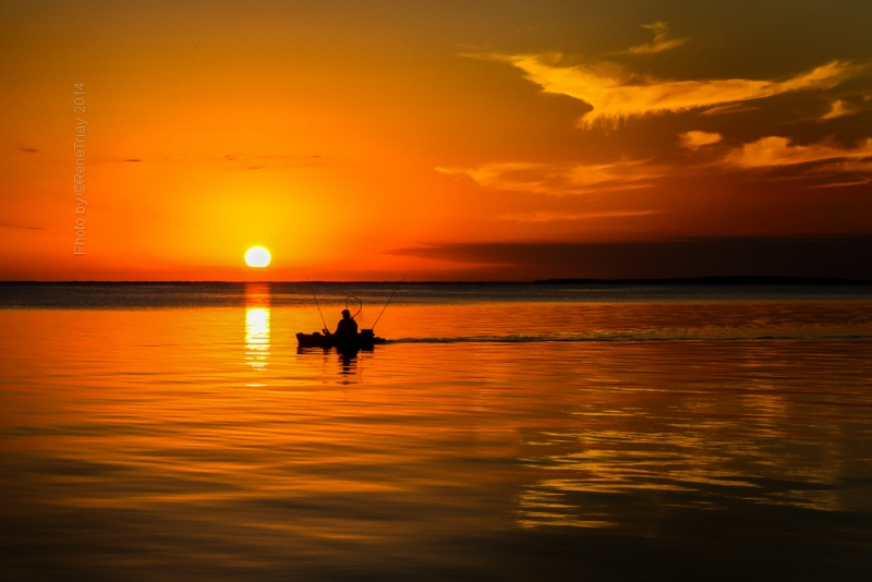 The Sunset Angler