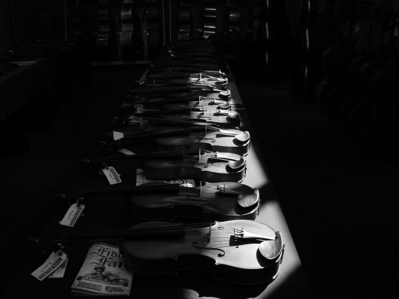 Violins In The Night