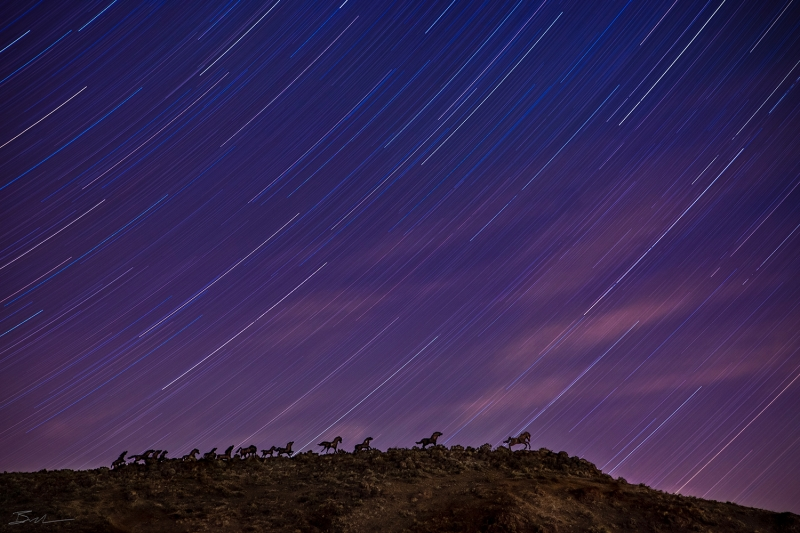 The Star Trail