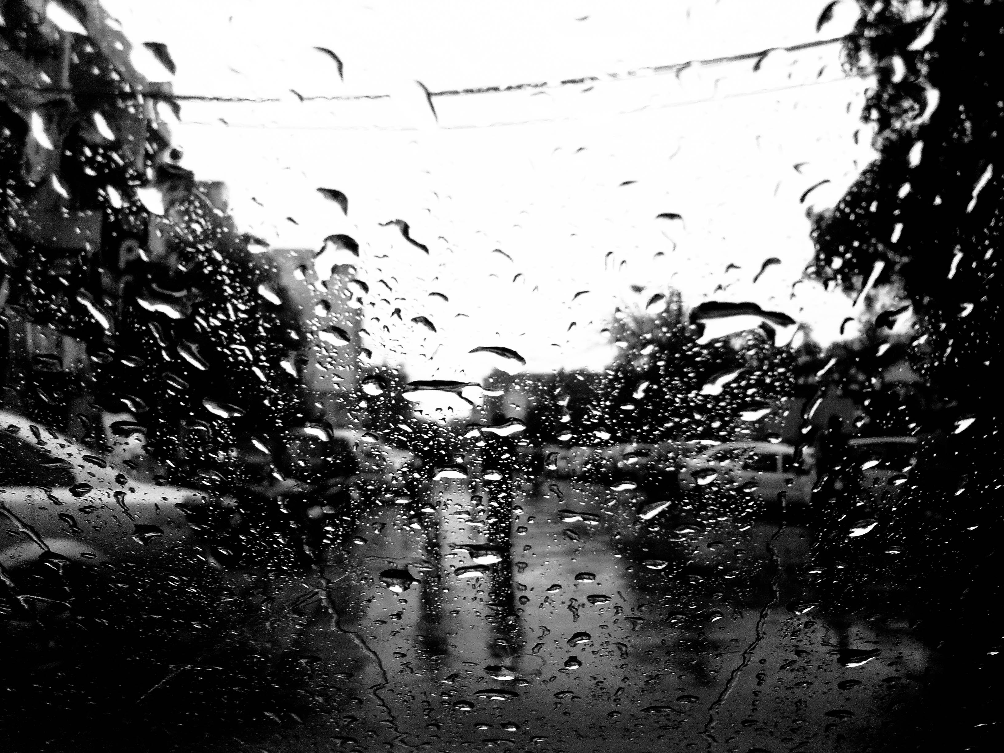 'rains and shades'