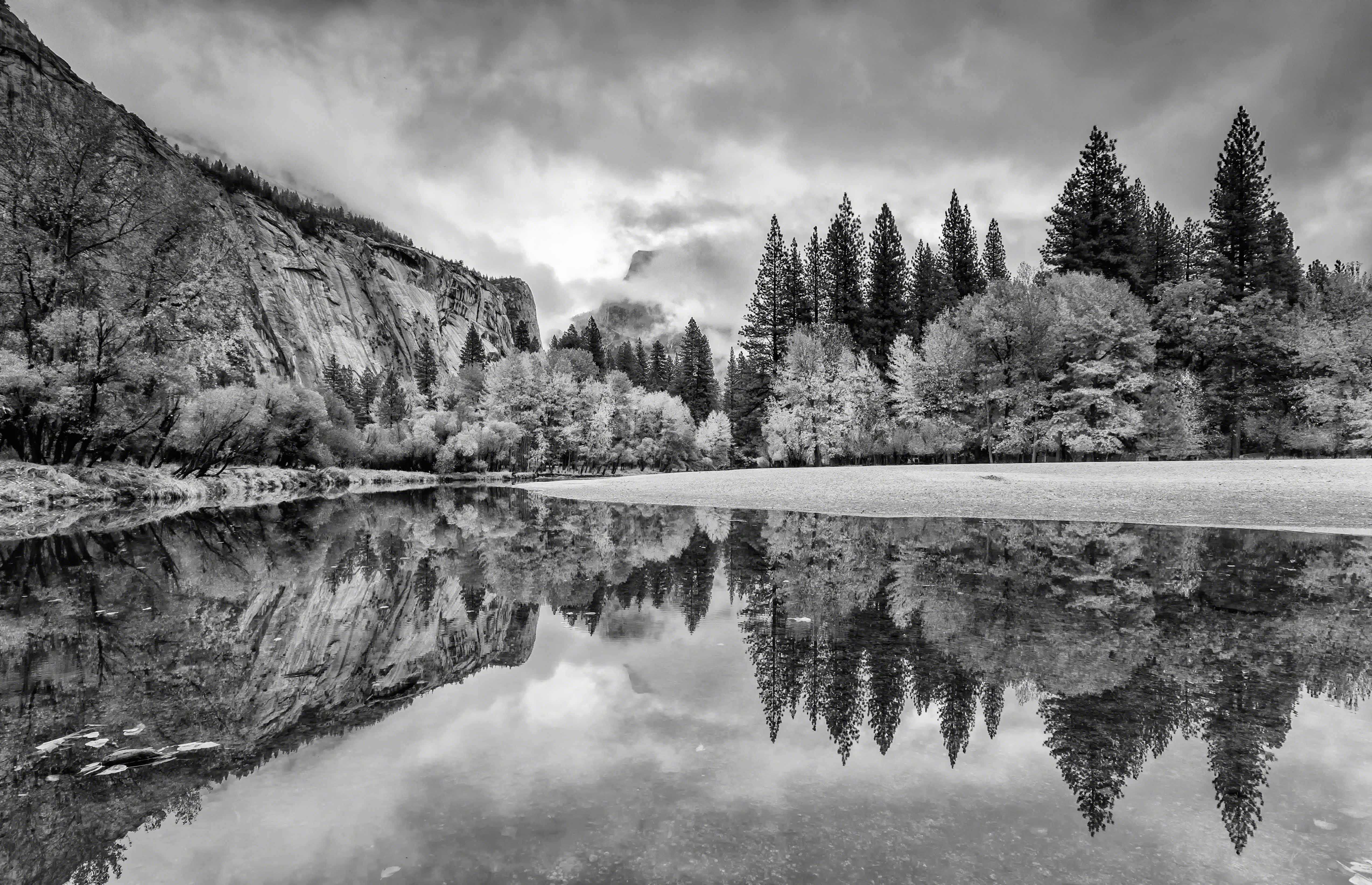 Fall-Reflections-BW