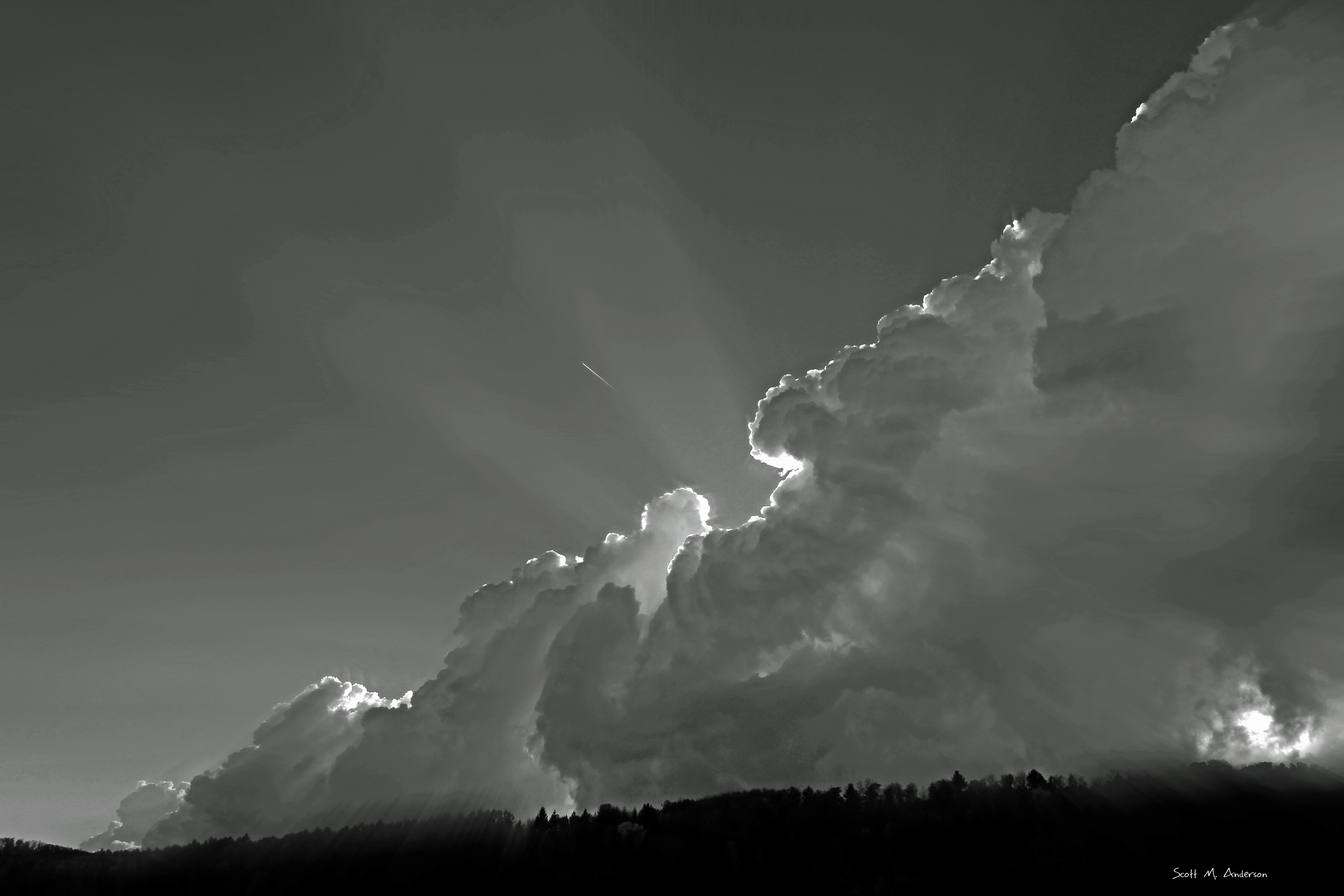 Fall Sky BW Signed