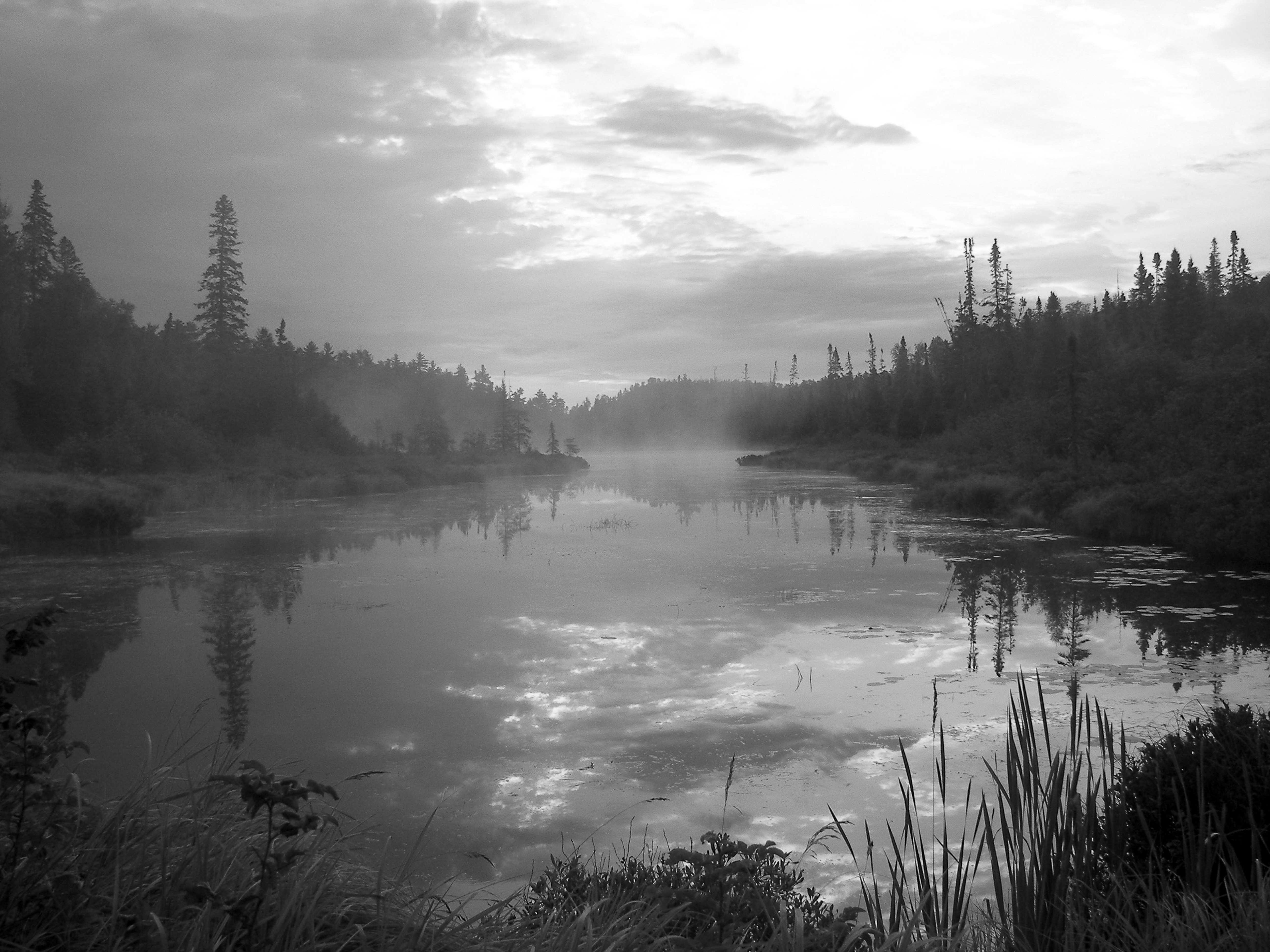 Foggy ClearWater Lakebw2