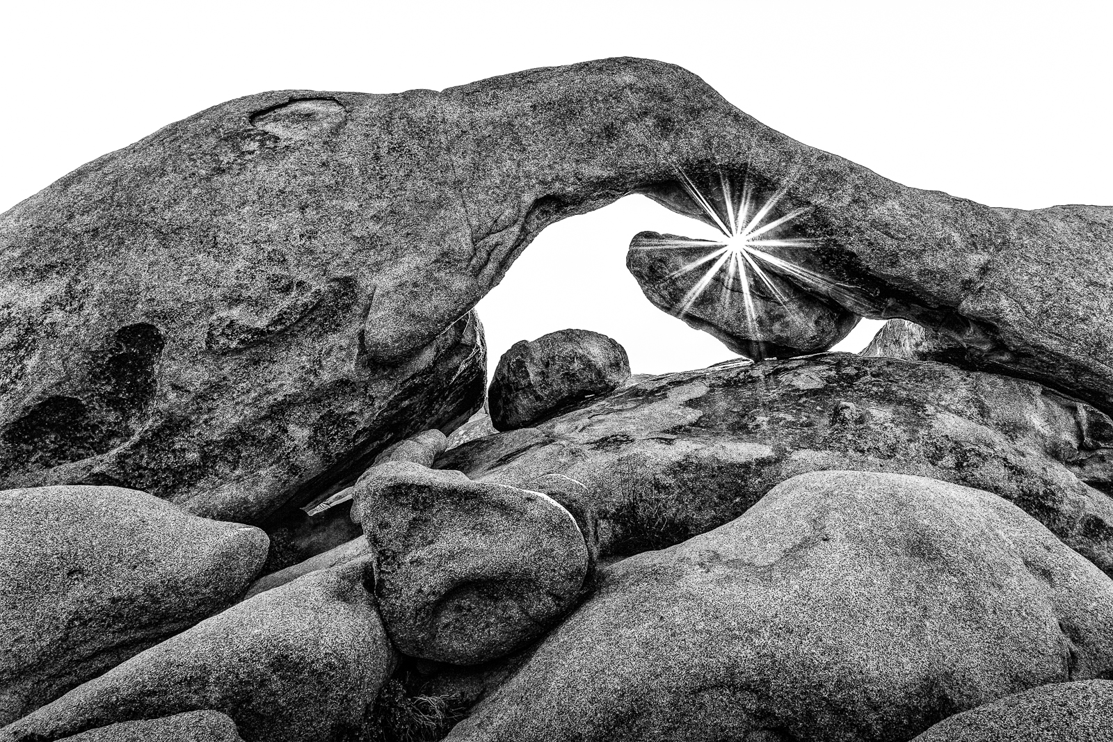 master_arch_rock_star_b&w-joshua_tree-217-