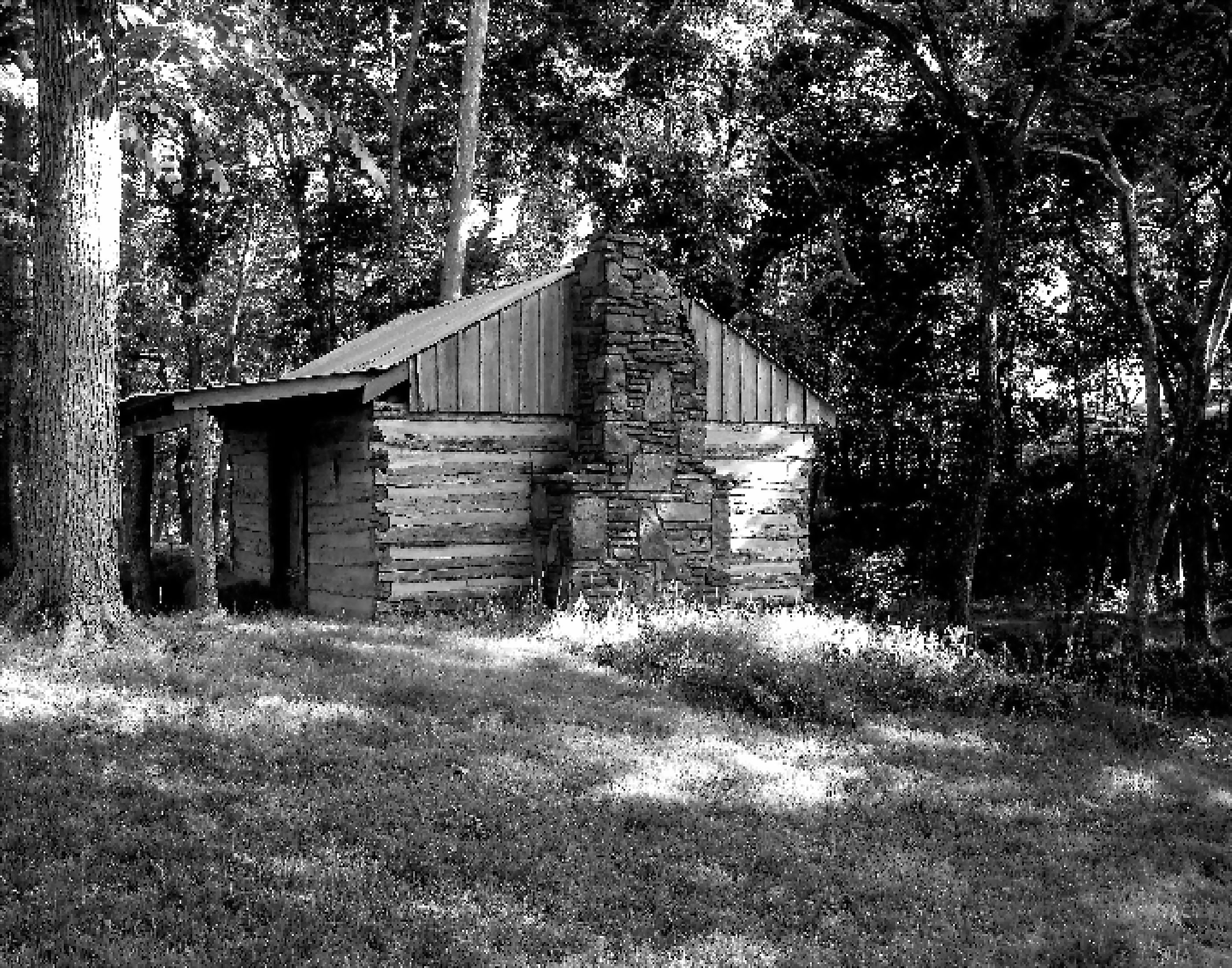 Small log cabin woods-bw