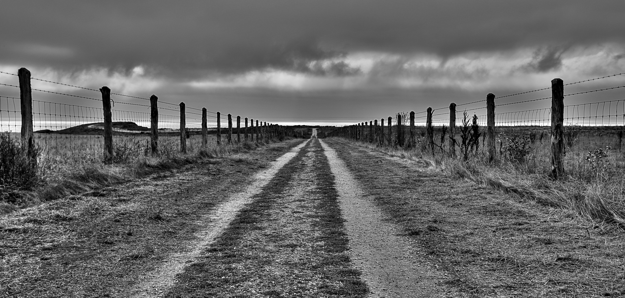 Sony-BWConTest-Road