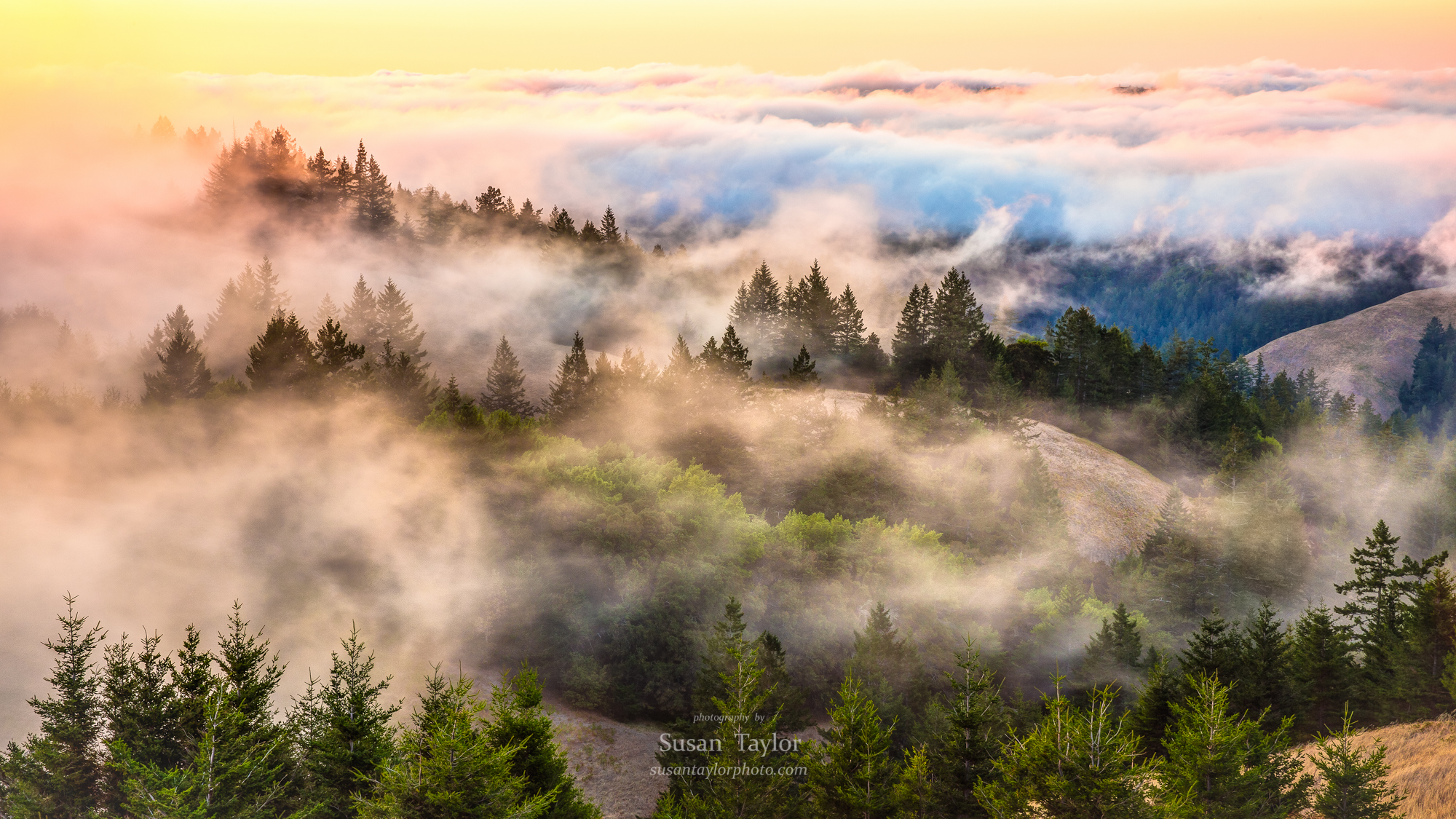 Coastal Fog Over Mount Tamalpias, CA