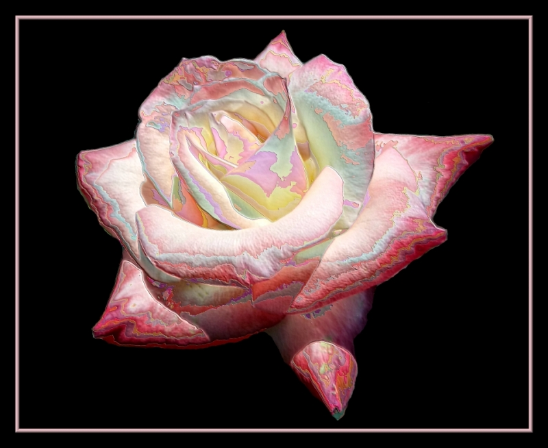 Enameled Rose