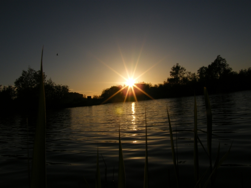 Sun Down  Over Ranworth Broad