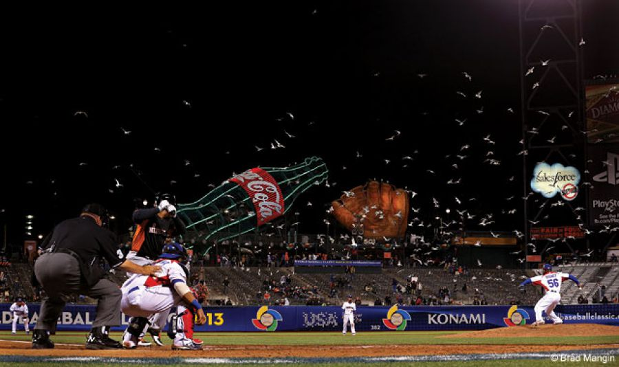 Even in an era of megabuck contracts, there's something unscripted about baseball. During the World Baseball Classic in 2013, Brad Mangin shows a flock of seagulls as they become part of the action during the Netherlands versus Dominican Republic game in San Francisco.