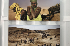 Of Love and War By Lynsey Addario